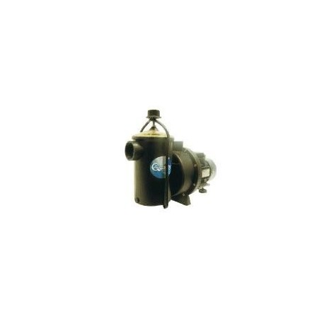 Quality 1.1 kW Swimming Pool Pump
